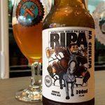 Cervejas-da-Saint-Bier-RIPA-na-chulipa