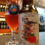 cervejas-da-dieu-du-ciel-rosée-d'hibiscus