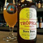 Algumas-cervejas-cariocas-trópica-bora-bora