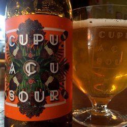 Cervejas-para-tomar-no-feriado-Morada-Cupuaçu-Sour