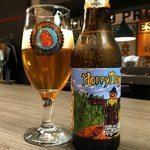 Cervejas-da-Tormenta-Hoppy-Day
