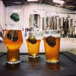 cervejarias-em-curitiba_swamp