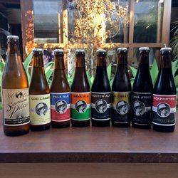 ideias-de-negocio-cerveja-artesanal_importadora